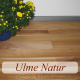 Ulme Natur vorgeölt 540x70mm swissline, Kurzstab